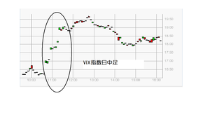 Vix20100416