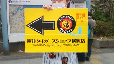 Yokoshin2